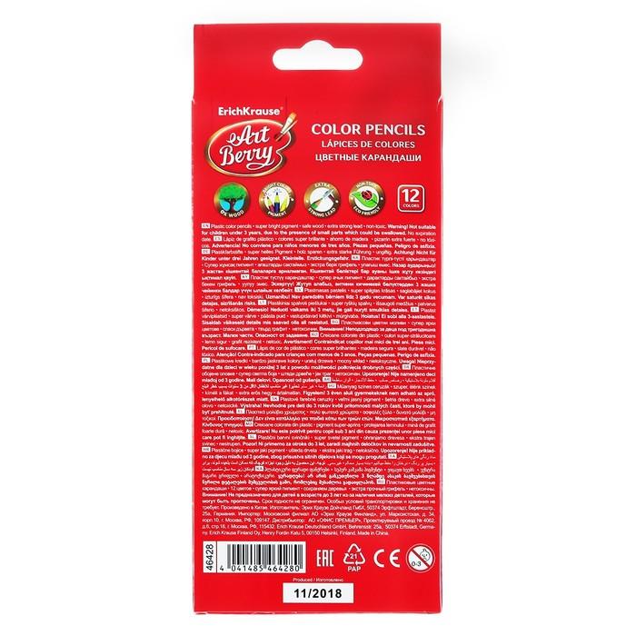 Карандаши 12 цветов, ArtBerry Wood Free, шестигранные, пластиковые, грифель диаметром 2.6 мм - фото 404519244