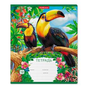 Тетрадь 12 листов, линейка, Erich Krause «Экзотические птицы», картонная обложка 170 г/м2 Ош