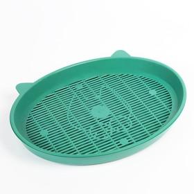 """Туалет с сеткой """"Киса"""", 37 х 27 х 4 см, зелёный"""