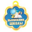 """Медаль """"Выпускник школы"""" глобус, учебники"""