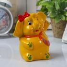 """Piggy Bank """"good luck Elephant"""", a MIX"""