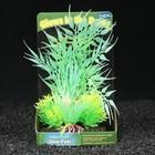 Островок аквариумных растений, светящихся в темноте, 19 х 7,5 х 16,5 см