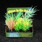Островок аквариумных растений, светящихся в темноте, 16 х 8 х 14 см