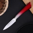 Нож кухонный «Спектр», лезвие 9 см, цельнометаллический, цвет МИКС