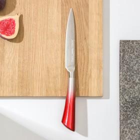 Нож кухонный «Спектр», лезвие 12 см, цельнометаллический, цвет МИКС