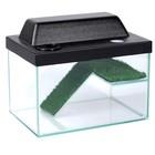 Террариум для черепах 12л, с крышкой, с полкой и лесенкой, 30 х 20 х 20 см