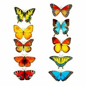 "Набор украшений на скотче ""Бабочки"" 10 шт, 12 х 12 см"