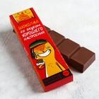 Шоколад «Шоколад со вкусом хорошего настроения», с пищевкусовой приправой «семена конопли», 50 г