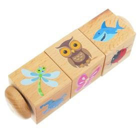 Кубики деревянные на оси «Живая природа» 3 кубика
