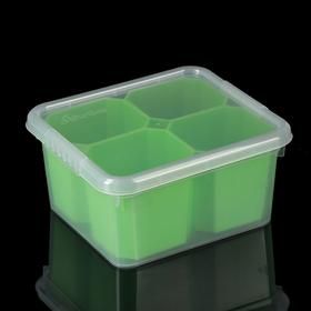 Контейнер для хранения FunBox Basic, 2 л, 4 вставки, цвет МИКС