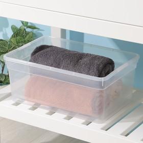 Контейнер для хранения FunBox Basic, 10 л, 36×24×15,5 см, цвет прозрачный