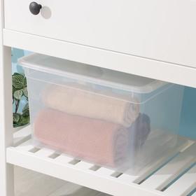 Контейнер для хранения с крышкой FunBox Basic, 20 л, 39,5×28,5×24,5 см, цвет прозрачный