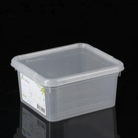 Контейнер для хранения с крышкой FunBox Basic, 2 л, 18×16×9 см, цвет прозрачный