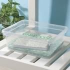 Контейнер для хранения Basic, 3 л, 24,5×19,5×9 см, цвет прозрачный - фото 308334688