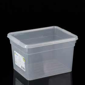 Контейнер для хранения с крышкой FunBox Basic, 5 л, 25×20×15,5 см, цвет прозрачный