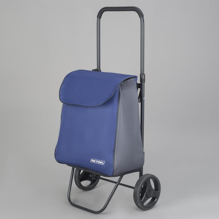 Сумка-тележка хозяйственная на колесах, цвет серый/синий