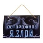 """Табличка на дверь """"Я злой"""""""