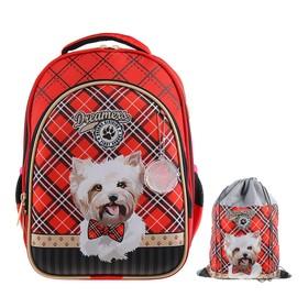 Рюкзак каркасный, Luris «Джерри 2», 38 х 28 х 18 см, наполнение: мешок для обуви, «Собачка»