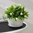 """Pot with stand 0.7 l """"Alice"""", white"""