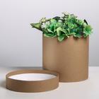 Подарочная коробка круглая «Крафт», 16 × 16 см
