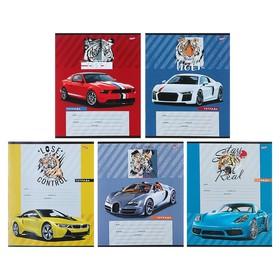 Тетрадь 12 листов дополнительная косая линия «Авто и тигры», обложка мелованная бумага, МИКС Ош