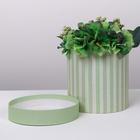Подарочная коробка круглая «Зелёные полосы», 16 х 16 см