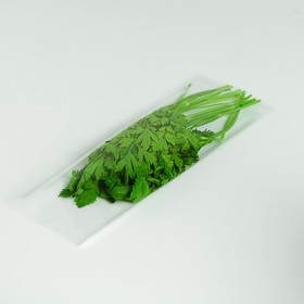 Package green 12 x 39.5 cm, 25 µm, with perforation