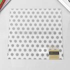 Веллум «Silver dots on vellum»  American Crafts 30,5х30,5 см.