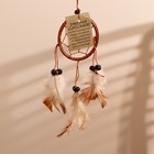 "Dreamcatcher ""Pacification"" brown 0,5х6х25 cm"