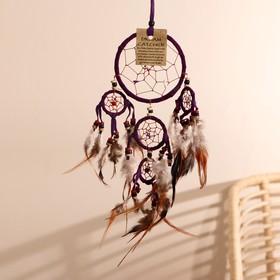 "Ловец снов ""Пять пурпурных колец"" 0,7х15х40 см"