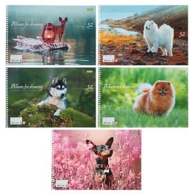 Альбом для рисования А4, 32 листа на гребне «Собаки», обложка мелованный картон, МИКС
