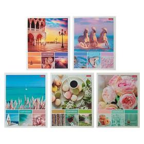 Тетрадь 60 листов клетка «Нежные моменты», картонная обложка, МИКС