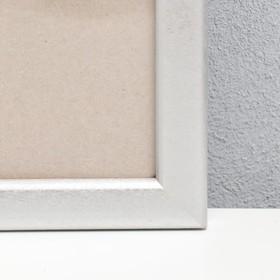 Фоторамка сосна с19 60х80 см (серебро) - фото 4631264