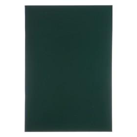 Тетрадь А4, 96 листов в линейку «Зелёная», бумвинил