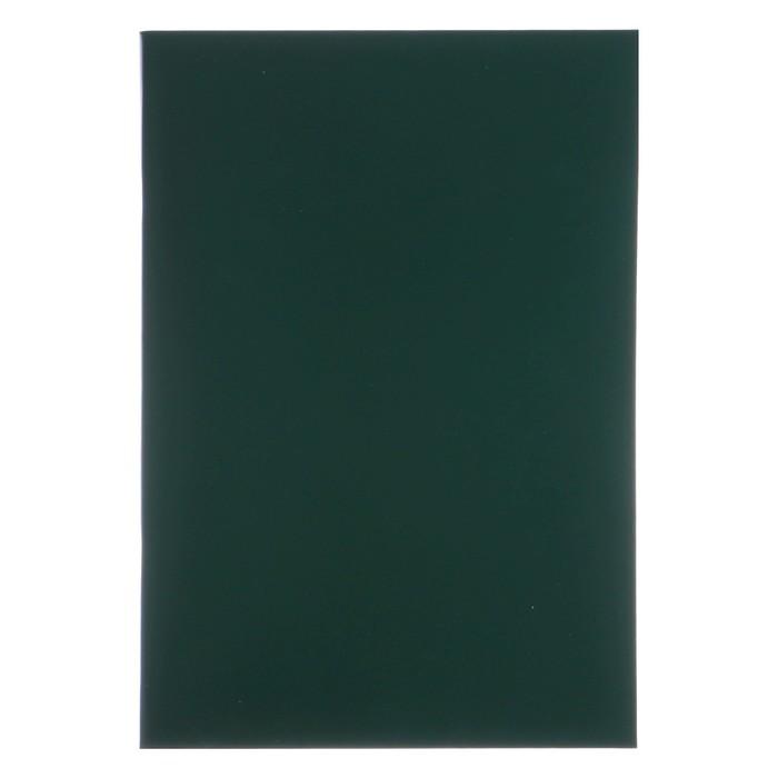 Тетрадь А4, 96 листов линейка «Зелёная», бумвинил