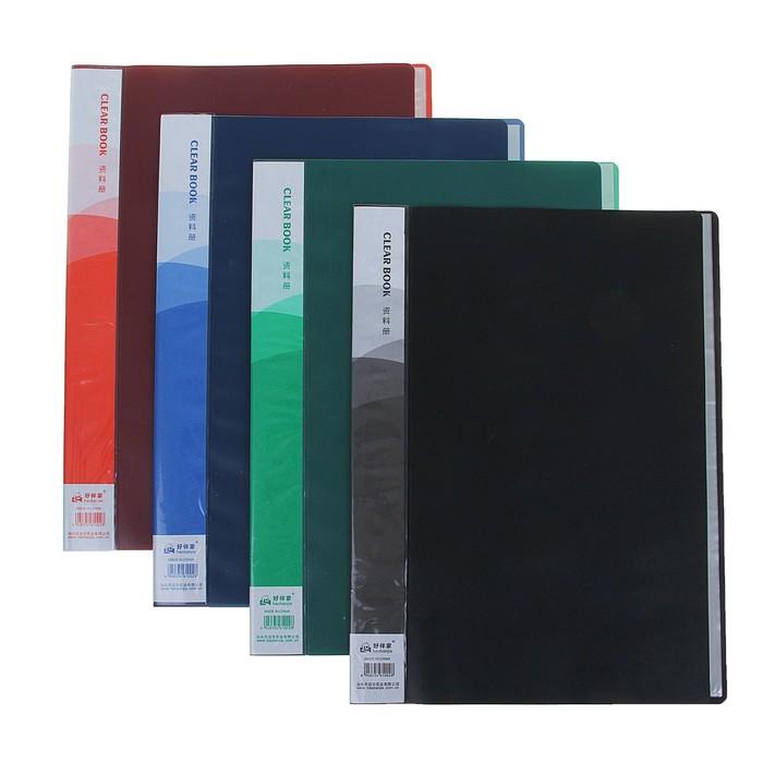 Папка, формат А4, 20 файлов, МИКС - фото 415604358