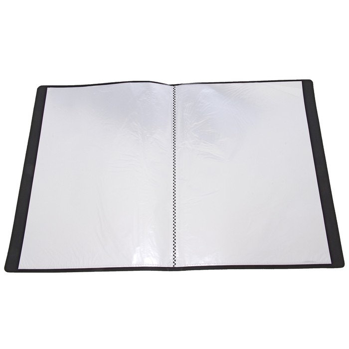 Папка, формат А4, 20 файлов, МИКС - фото 415604359