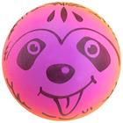 Мяч детский «Мордочка», d=22 см, 70 г