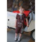"""Футболка KAFTAN """"Доберман"""" р.32 (110-116), коричневый - фото 1947214"""