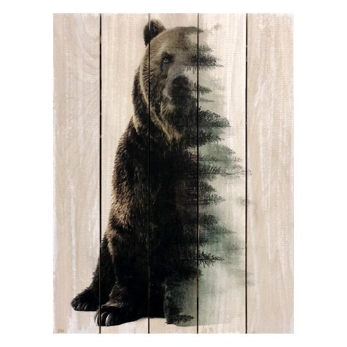 """Картина для бани, тематика животные """"Хозяин леса"""", МАССИВ, 40×30 см"""