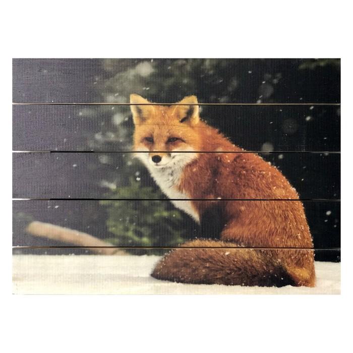"""Картина для бани, тематика животные """"Одинокий лис"""", МАССИВ, 40×30 см"""