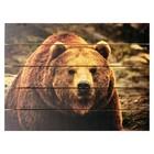"Картина для бани, тематика животные "" Медведь бурый"""