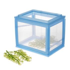 Отсадник с сетчатыми стенками, растение в комплекте, 17 х 14 х 14 см