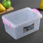 Контейнер пищевой 3 л Hide box, цвет прозрачный