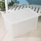 Ёмкость для хранения вещей с крышкой 40 л, цвет МИКС