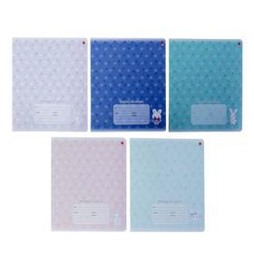 Тетрадь 24 листа в клетку «Зефирные зайчата», обложка мелованный картон, конгрев, МИКС