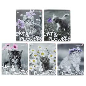 Тетрадь 48 листов в клетку «Котята и цветы», обложка мелованный картон, гибридный лак, МИКС