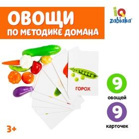 Обучающий набор по методике Г. Домана «Овощи»: 9 карточек + 9 овощей, счётный материал в наличии