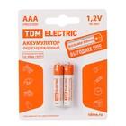 Аккумулятор TDM, AAA, Ni-Mh, HR03-2BL, 1.2В, 600 мАч, блистер, 2 шт.