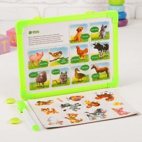 Доска магнитная 'Как говорят животные', набор магнитов + маркер Ош